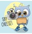 Cute cartoon Owl with a camera vector image vector image