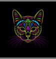 decorative psychedelic cat portrait on black vector image vector image