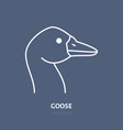 goose head flat line icon bird sign vector image vector image