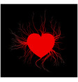 human veins with heart red love blood vessels vector image
