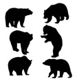Bear Silhouette Animal vector image vector image