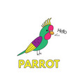 cartoon parrot flashcard for children vector image vector image