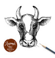 hand drawn sketch cow head isolated portrait on vector image vector image