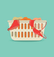 laundry basket with underwear and dirty clothes vector image