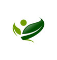 logo concept design vector image vector image
