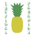 pineapple icon on white background vector image vector image