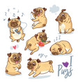 set of cute pug pupies for cards banners vector image