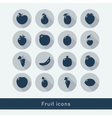 Set of fruit icons vector image vector image