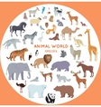 Set of World Animal Species vector image vector image