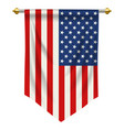 united states of america pennant vector image vector image