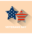 for Veterans day vector image