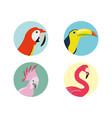 exotic bird heads set icon vector image