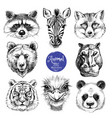 hand drawn sketch animal heads isolated cute vector image vector image