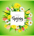 hello spring banner background template vector image vector image