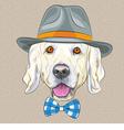 hipster dog Golden Retriever vector image