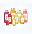 realistic detailed 3d juice bottle set vector image