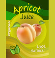 apricot juice template packaging design ill vector image vector image
