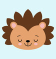 cute flat sleeping hedgehog with blush childish vector image vector image