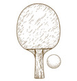 engraving of ping pong table tennis racket and vector image vector image