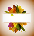 fall leafs vector image vector image