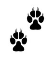 footprints of paws of an animal vector image