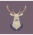 hand drawn colorful of deer and laurel vector image