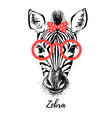 hand drawn sketch zebra hipster head isolated vector image vector image