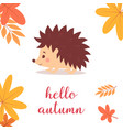 hedgehog with leaves vector image vector image