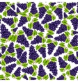 Seamless grapes fruit pattern vector image