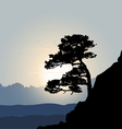 tree silhouette on a mountain background sunrise vector image vector image