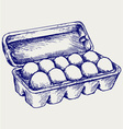 Eggs in a carton package vector image vector image