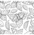 Mint leaf pattern Peppermint leaves sketch vector image vector image