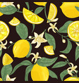 natural seamless pattern with fresh juicy lemons vector image