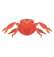 red crab sea life marine icon vector image