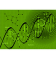 background with DNA vector image vector image
