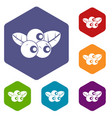 blueberries icons set hexagon vector image vector image