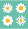 camomile icon set white daisy chamomile cute vector image vector image
