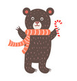 closeup of bear with scarf vector image vector image