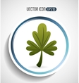 corainder leaf design vector image