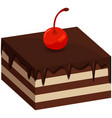 creamy homemade chocolate cake with dark icing vector image