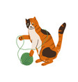 cute three color cat playing with tangle yarn ball vector image vector image