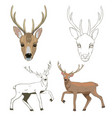 deer sketch set vector image
