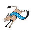 Donkey Jackass Jumping Democrat vector image vector image
