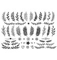 Set of hand drawn branches and flowers vector