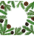 background with realistic green fir tree branch vector image vector image