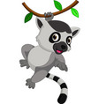 cute lemur cartoon vector image vector image