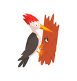 cute woodpecker sitting on a tree with a worm vector image vector image