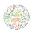fresh vegetables round banner design vector image