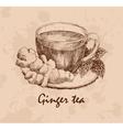 Ginger tea vector image vector image