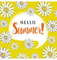 hello summer greeting card with daisies vector image vector image
